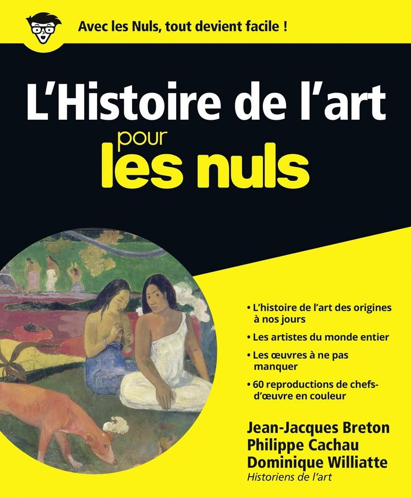 L Histoire De L Art Pour Les Nuls Pour Les Nuls