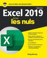 Excel 2019 Tout en 1 pour les Nuls, grand format