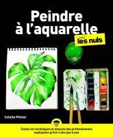 L'Aquarelle pour les Nuls, grand format, 2e éd.