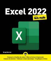 Excel 2022 pour les Nuls, grand format