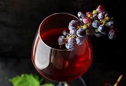 Dégustation de vin : comment décrire le goût et les saveurs ?