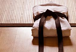 10 anecdotes sur le Judo par Lucie Decosse