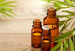 Tout savoir sur l'huile essentielle de menthe poivrée (Mentha x piperita)