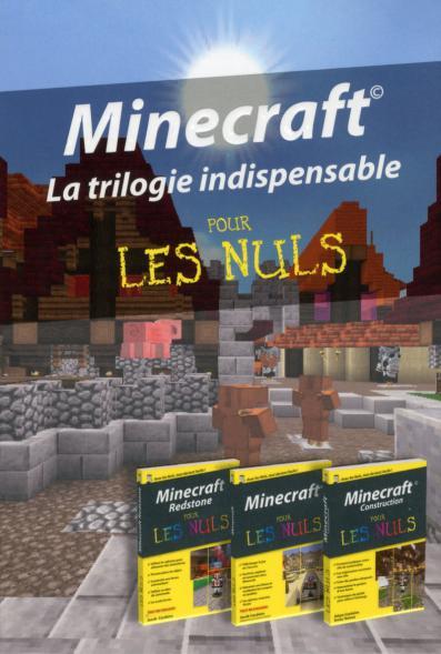 Coffret Minecraft  pour les Nuls poche